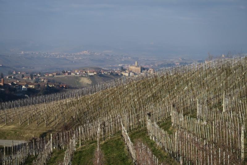 from Giovanni Manzone, Monforte d'Alba, Barolo