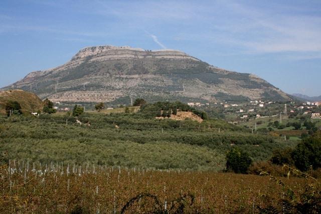 Campania 2 – Furore and Montevetrano