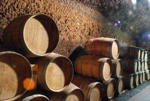 barrique in tufa cellar