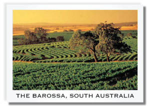 Barossa-postcard