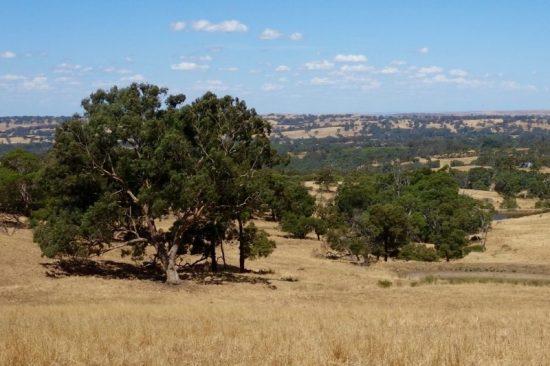 Eden Valley