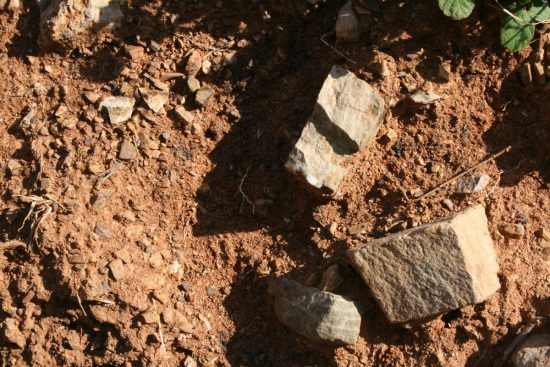 galestro soil