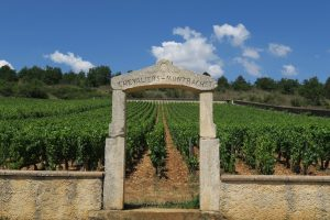 Grand Cru Chevalier-Montrachet vineyard with gate